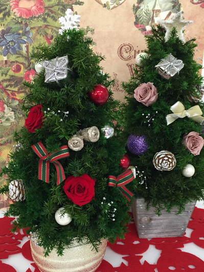IMG_1783.JPGクリスマスツリー