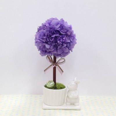 紫トピアリー